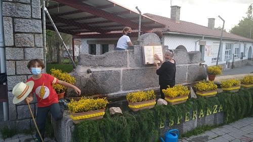 Festival del Piorno en flor. Navarredonda de Gredos.