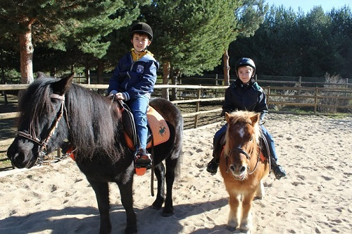 Equiberia hace excursiones en poni para niños en Navarredona de Gredos, Ávila.
