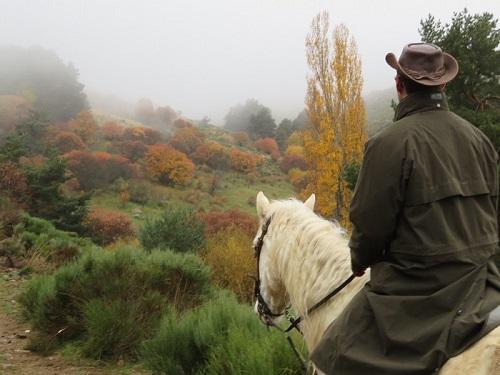 Gredos a caballo.