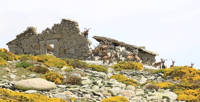 antiguo refugio del Rey en la Sierra de Gredos