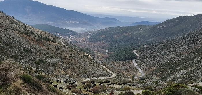 avileñas bajando el puerto del pico en Ávila