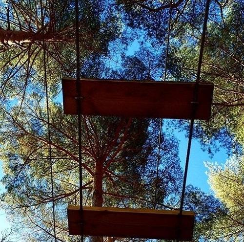 Parque de aventura Pinos Cimeros, en Hoyos del Espino.