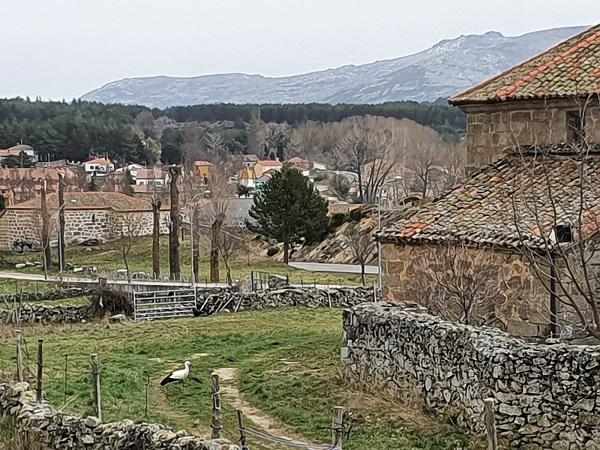 vista desde casa del altozano en gredos